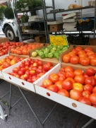 Tomatoes and tomatillos!