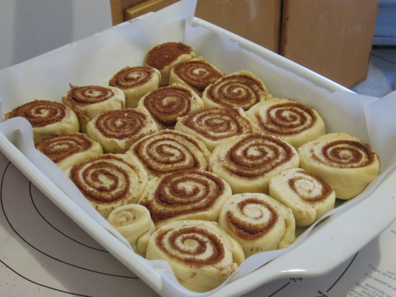 Tray of rolls; ready for a rise
