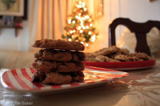 Peanut Butter Chocolate Chip Cookies_4