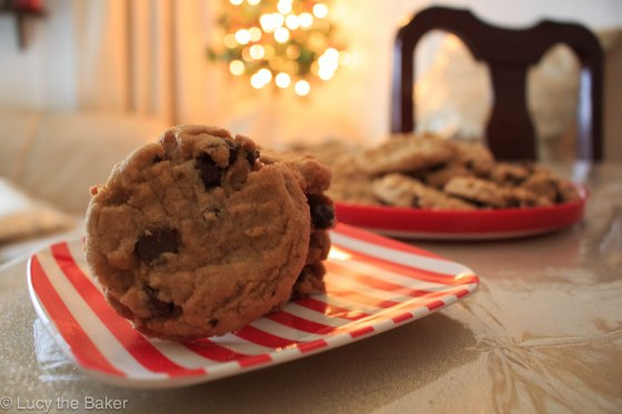 Peanut Butter Chocolate Chip Cookies_5